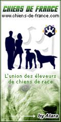 Chats de France