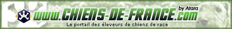 www.chats-de-france.com, l'union des éleveurs de chats de race.