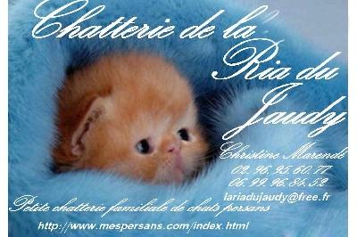 La Ria Du Jaudy - mon autre site