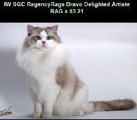 regencyrags Bravo delighted artiste
