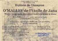 CH.  O'malley de l'étoile de jana