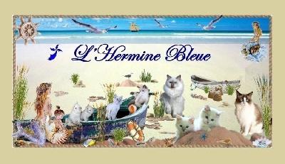 De L'Hermine Bleue