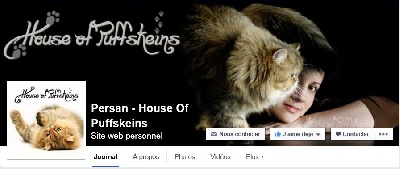Of Puffskeins - Nous sommes sur Facebook