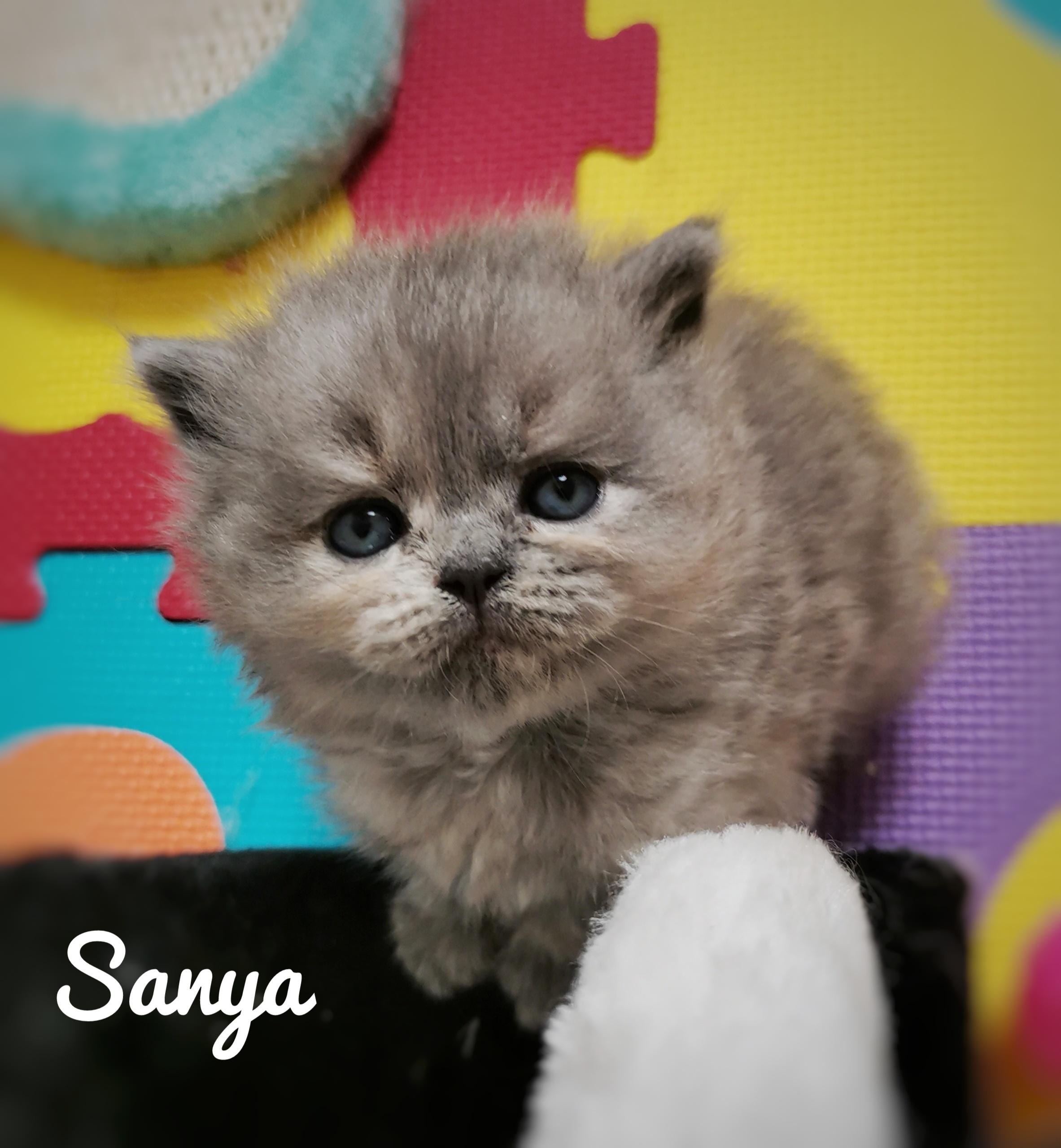 SANYA -
